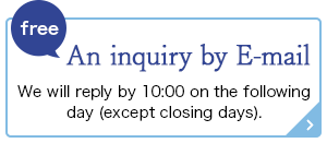 free An inquiry by E-mail